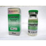 Testosterone Enanthate SP Laboratories